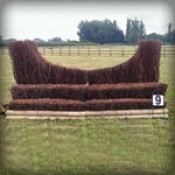 Brush fences (6)